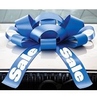 Car Bows & Windshield Bows